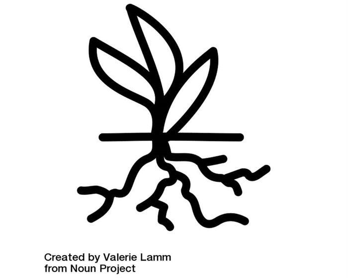 Planta con raíces