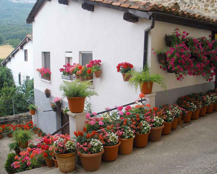 Casa con flores