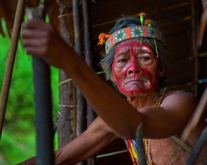 Indígena adulto