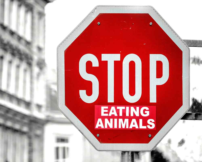 Señalización: stop eating animals