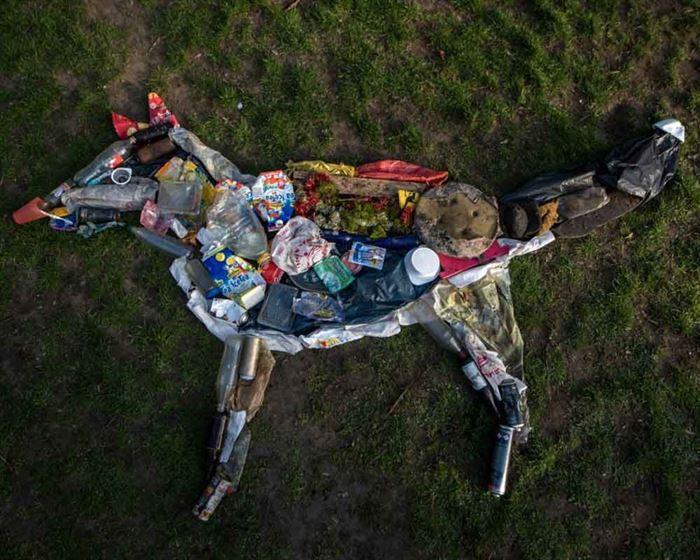 Zorro de residuos Life in plastic