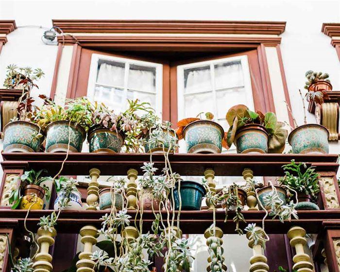 Balcón con masetas