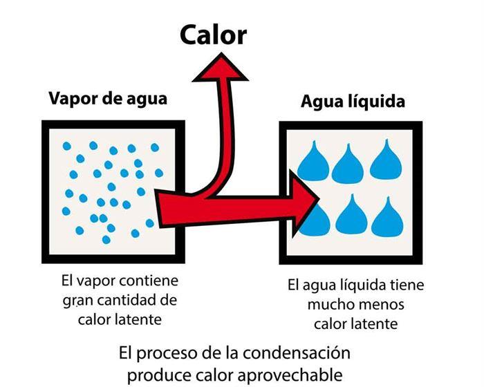 Proceso de condensación
