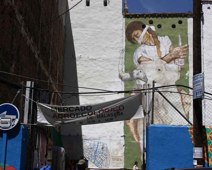 Mercado Agroecológico de Malasaña, Alice Cognez